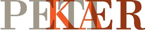 Peter Kær Retina Logo